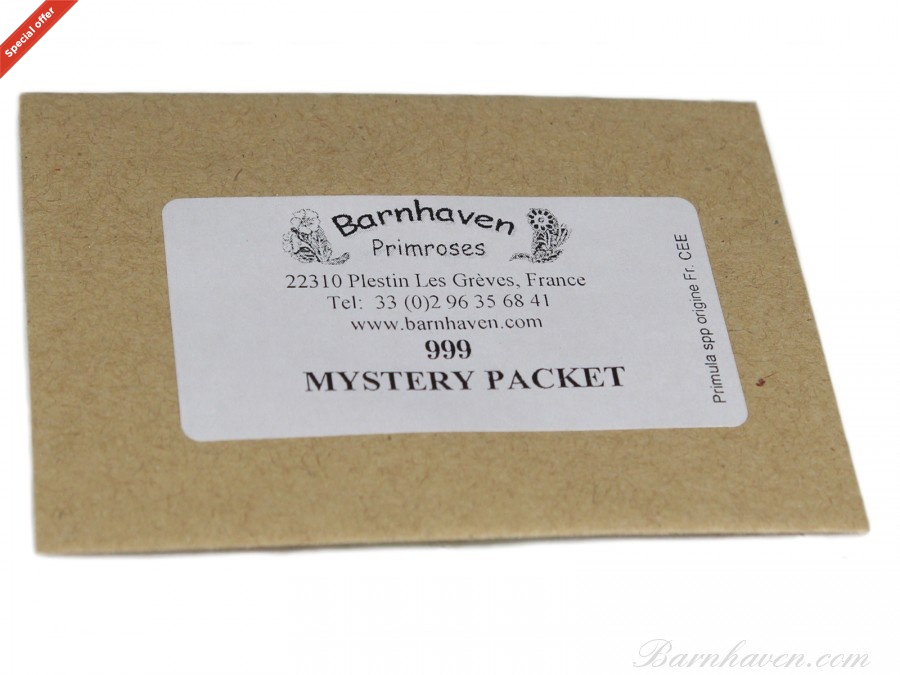 Mystery packet