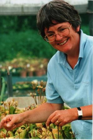 Angela Bradford